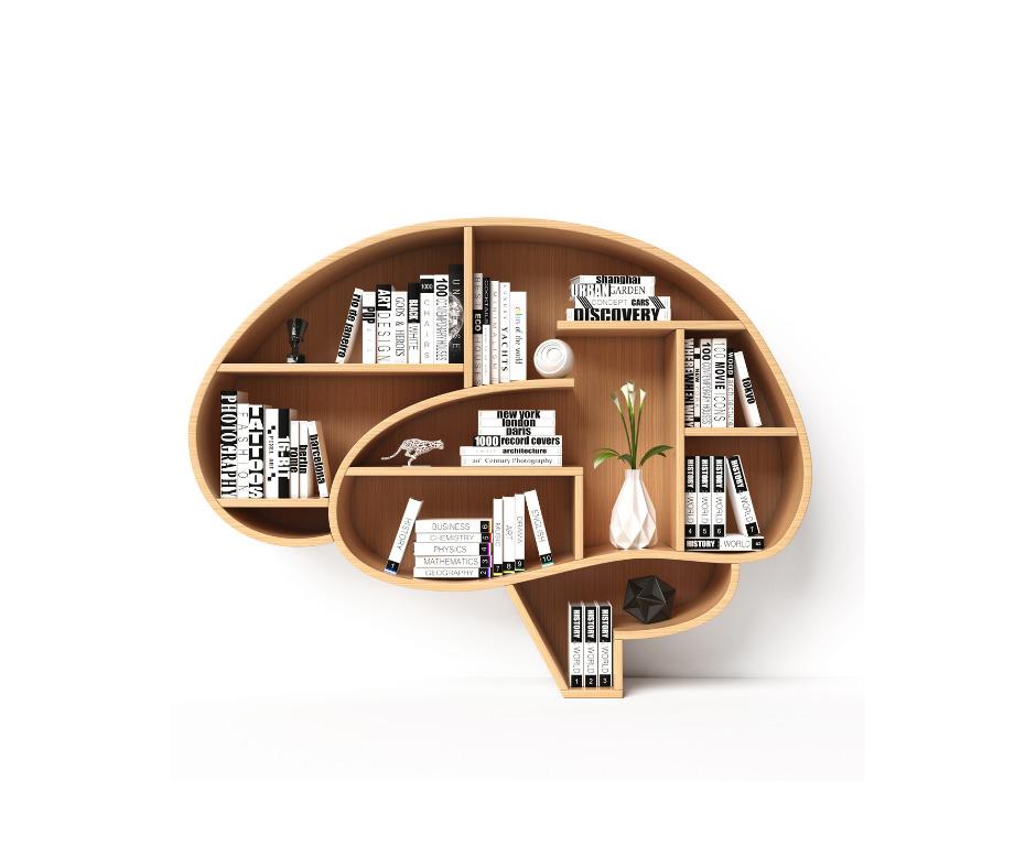 ゴミ捨てから学ぶ脳内環境の整え方